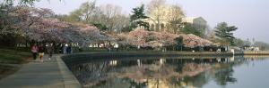 Reflection of a Monument in a River, Jefferson Memorial, Potomac River, Washington DC, USA