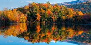 Reflection of autumn trees in a lake, West Bolton, Quebec, Canada