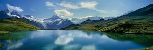 Reflection of clouds and mountain in a lake, Bachalpsee, Grindelwald, Bernese Oberland, Switzerland