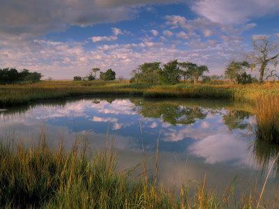 https://imgc.allpostersimages.com/img/posters/reflection-of-clouds-on-tidal-pond-in-morning-light-savannah-georgia-usa_u-L-P42ODX0.jpg?p=0