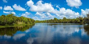 Reflection of clouds on water, Deer Creek in Deer Prairie Creek Preserve, Venice, Florida, USA