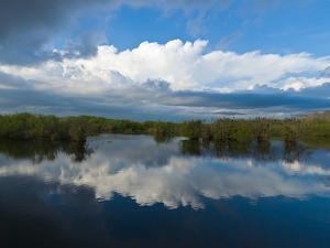 Reflection of Clouds on Water, Everglades National Park, Florida, USA