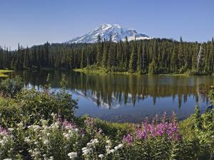 Reflection of Mountain and Trees in Lake, Mt Rainier National Park, Washington State, USA