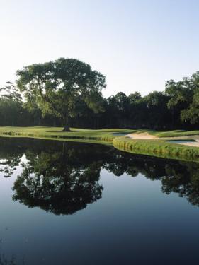 Reflection of Trees in a Lake, Kiawah Island Golf Resort, Kiawah Island, Charleston County