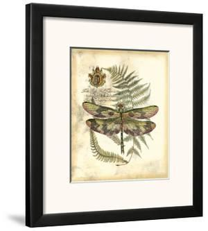 Regal Dragonfly IV
