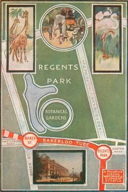 Regents Park and Botanical Gardens, Showing Local Railway Stations