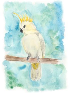 Sweet Tropical Bird II by Regina Moore