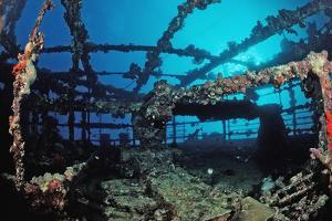 Scuba Diver Diving on Umbria Shipwreck, Sudan, Africa, Red Sea, Wingate Reef by Reinhard Dirscherl