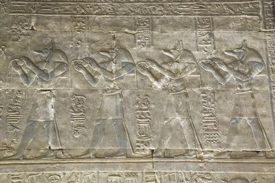 https://imgc.allpostersimages.com/img/posters/relief-depicting-the-god-anubis-temple-of-horus-edfu-egypt-north-africa-africa_u-L-PWFT6G0.jpg?p=0