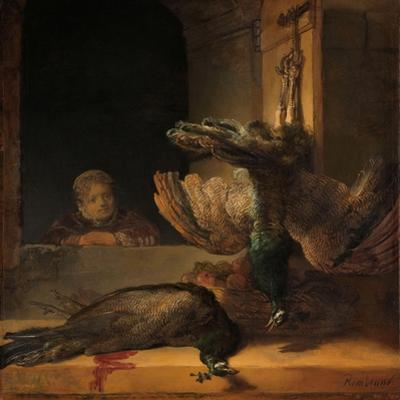 Still Life with Peacocks, c.1639 by Rembrandt Harmensz. van Rijn