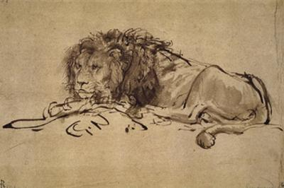 Lion Resting, Turned to the Left