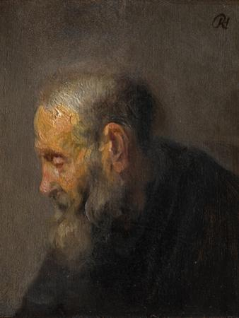 Study of an Old Man in Profile, C.1630 by Rembrandt van Rijn