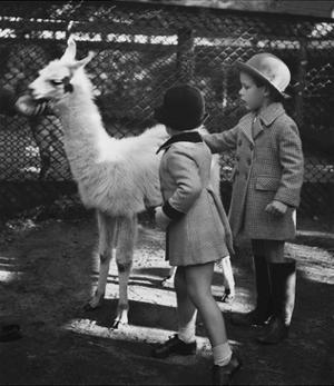 Vogue - November 1934 - Llama in a Petting Zoo by Remie Lohse