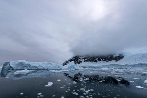 Floating Ice Mountains and Coastline Neko Harbour Antarctic Peninsula Antarctica by Renato Granieri