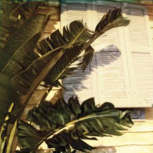 Conchy Joe's I by Rene Griffith