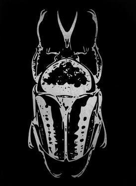 Silver Foil Beetle IV on Black by Renée Stramel