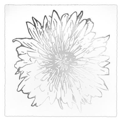 Silver Foil Flower Burst II Deckled