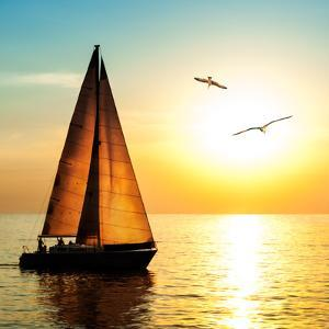 Yacht Sailing against Sunset. Holiday Lifestyle Landscape with Skyline Sailboat and Two Seagull. Ya by Repina Valeriya