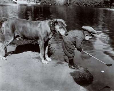 Retrieving The Ball