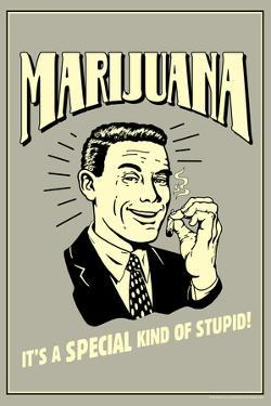 Marijuana Special Kind Of Stupid Funny Retro Poster by Retrospoofs
