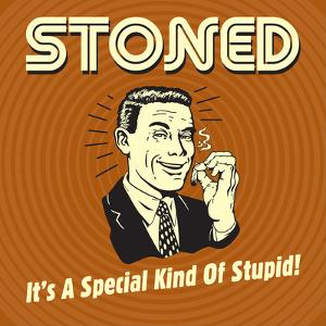 Stoned it's a Special Kind of Stupid! by Retrospoofs