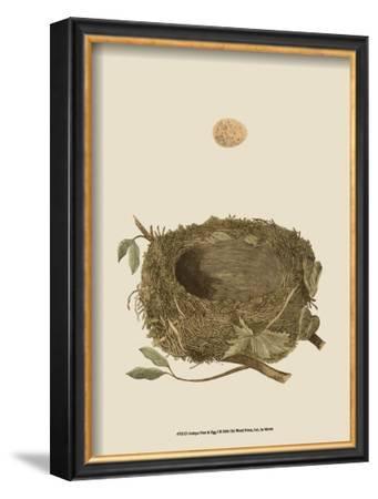 Antique Nest and Egg I
