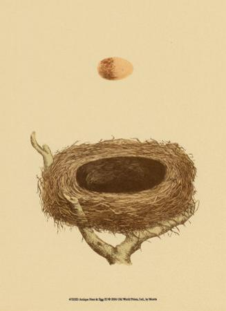 Antique Nest and Egg III
