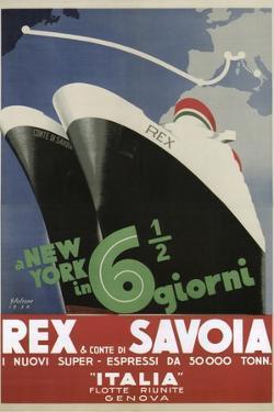 Rex Savoia