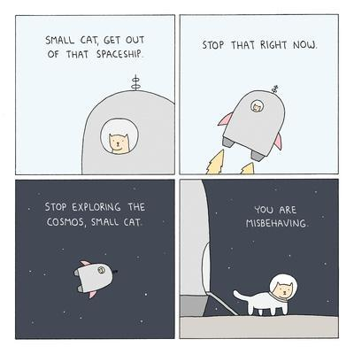 Bad Small Cat