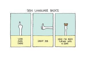 Sign Language Basics by Reza Farazmand