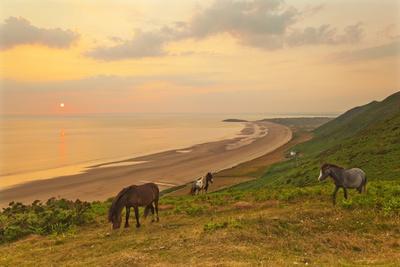https://imgc.allpostersimages.com/img/posters/rhossili-bay-gower-peninsula-wales-united-kingdom-europe_u-L-PQ8TIN0.jpg?artPerspective=n