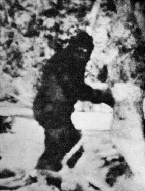 Bigfoot Film, 1967 by Ria Novosti