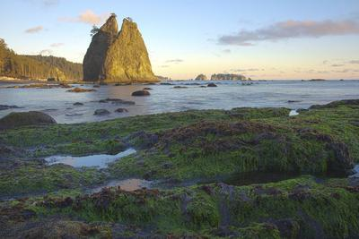 https://imgc.allpostersimages.com/img/posters/rialto-beach-olympic-national-park-in-clallam-county-washington-state_u-L-Q1H24380.jpg?artPerspective=n