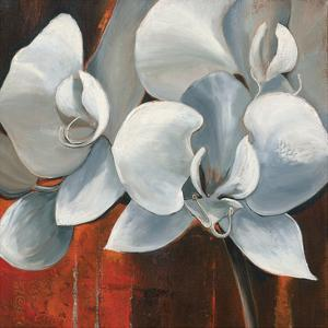 Pearl Orchid I by Rian Withaar