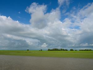 Rice fields with clouds along Kaladan River, Rakhine State, Myanmar