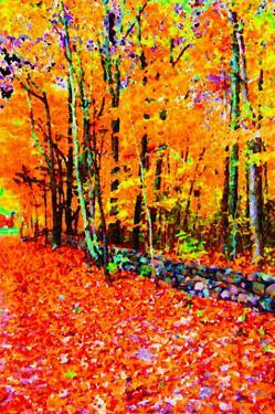 Forest in Autumn by Rich LaPenna