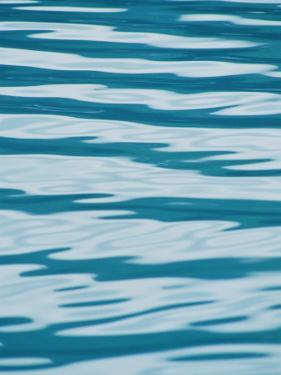 Atlantic Ocean Pattern, Kenai Fjords Nationial Park, Alaska by Rich Reid