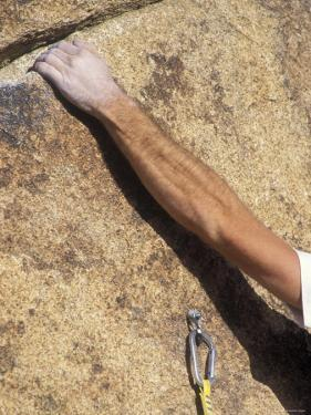 Detail of a Rock Climbing Bolt and a Climber's Forearm, California by Rich Reid