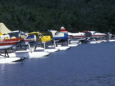 Floatplanes on Naknek Lake for Bear Viewing at Katmai National Park, Alaska by Rich Reid