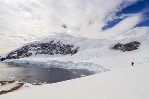 Hiker in Front of a Glacier at Neko Harbor on the Antarctic Peninsula by Rich Reid