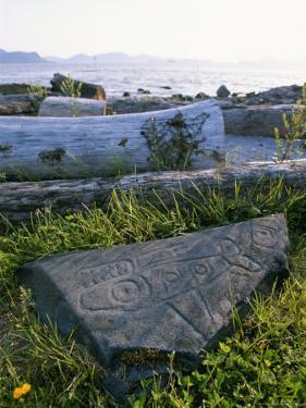 Killer Whale Petroglyph on the Beach at Petroglyph Beach State Park by Rich Reid