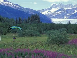 Paraglider Landing in a Field near the Mendenhall Glacier, Alaska by Rich Reid