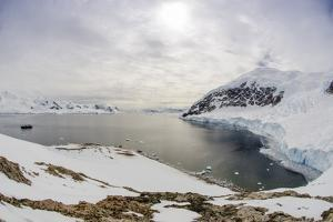 Wide Angle of a Ship and Glacier at Neko Harbor on the Antarctic Peninsula by Rich Reid
