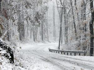 October Snow by Rich Schultz