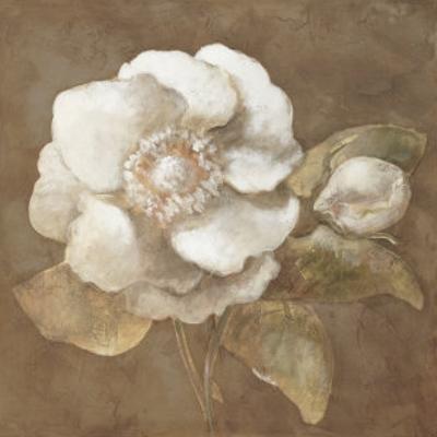 Amber Rose by Rich Wilder