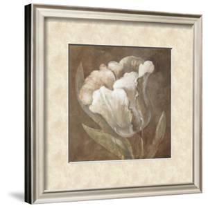 Tulip by Rich Wilder
