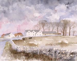 Lowland Farm by Richard Akerman
