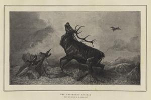 The Shepherd's Revenge by Richard Ansdell