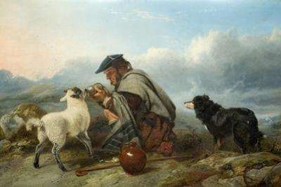 The Sick Lamb, 1853