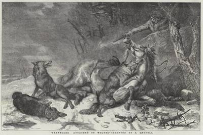 Traveller Attacked by Wolves